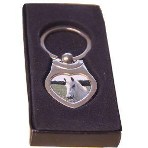 Metal key ring blue