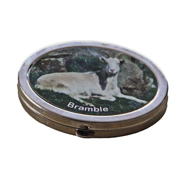 compact-mirror-bramble-1