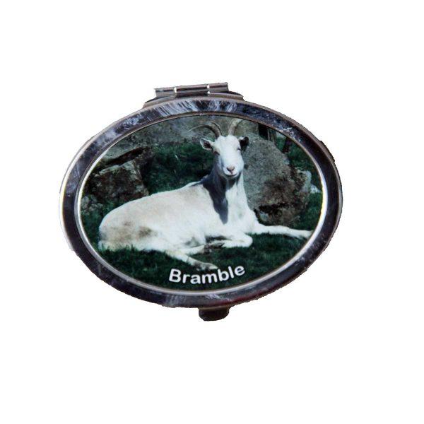 compact-mirror-bramble
