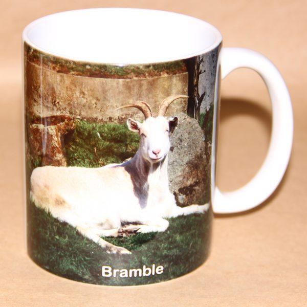 Mug-with-image-of-Bramble