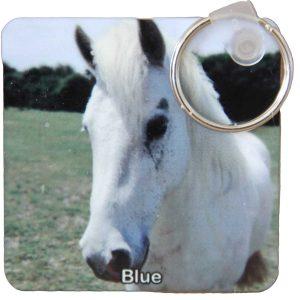plastic-keyring-blue