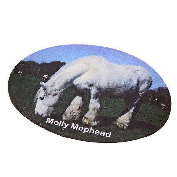 fridge-magnet-molly-mophead